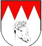 ponyverein franken 160