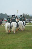 usingen-quadrille-2015-11_lbb