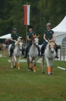 usingen-quadrille-2015-5_lbb