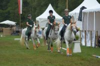 usingen-quadrille-2015-7_lbb
